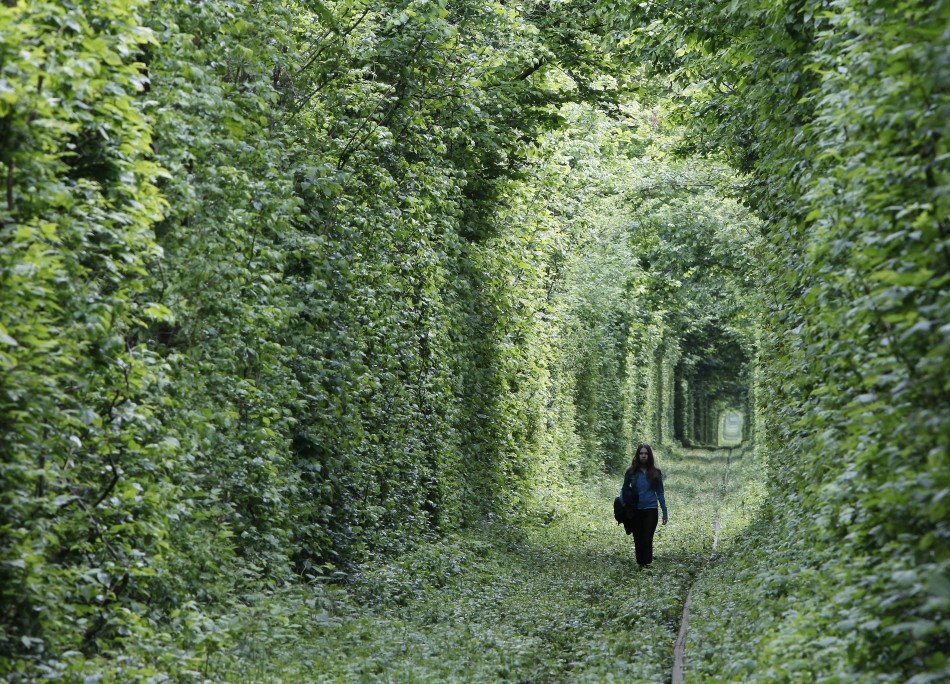 a-girl-walks-on-a-disused-railway-track-through-what-is-known-locally-as-the-tunnel-of-love-in-small-town-kleven-some-350km-217-miles-off-western-kiev-may-13-2012