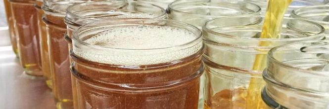 Here comes the jam made with beer (with recipe )