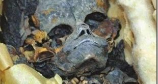 Egypt, new mummified alien founded in a secret room